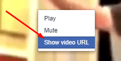 How to Save Videos from Facebook - Show Video URL