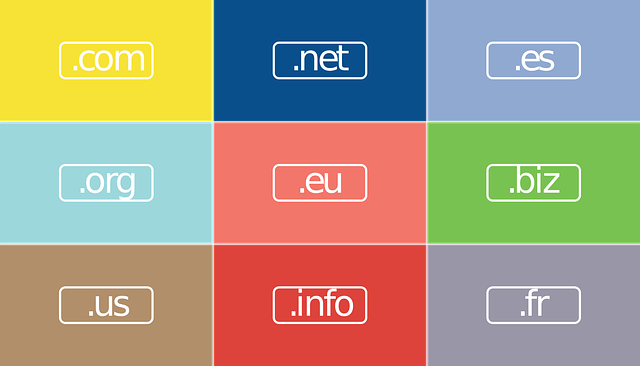 Consider these Things Before Buying Expired Domains