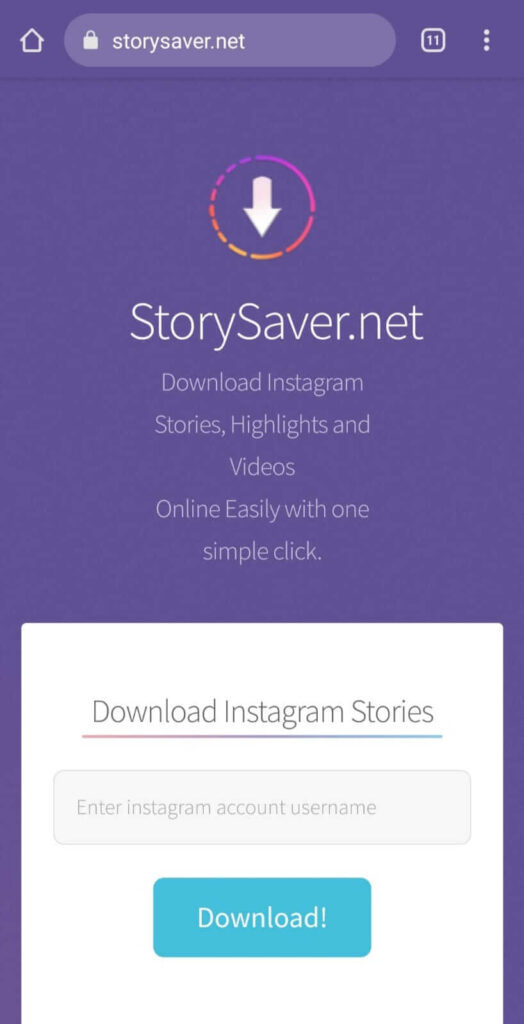storysaver.net home page