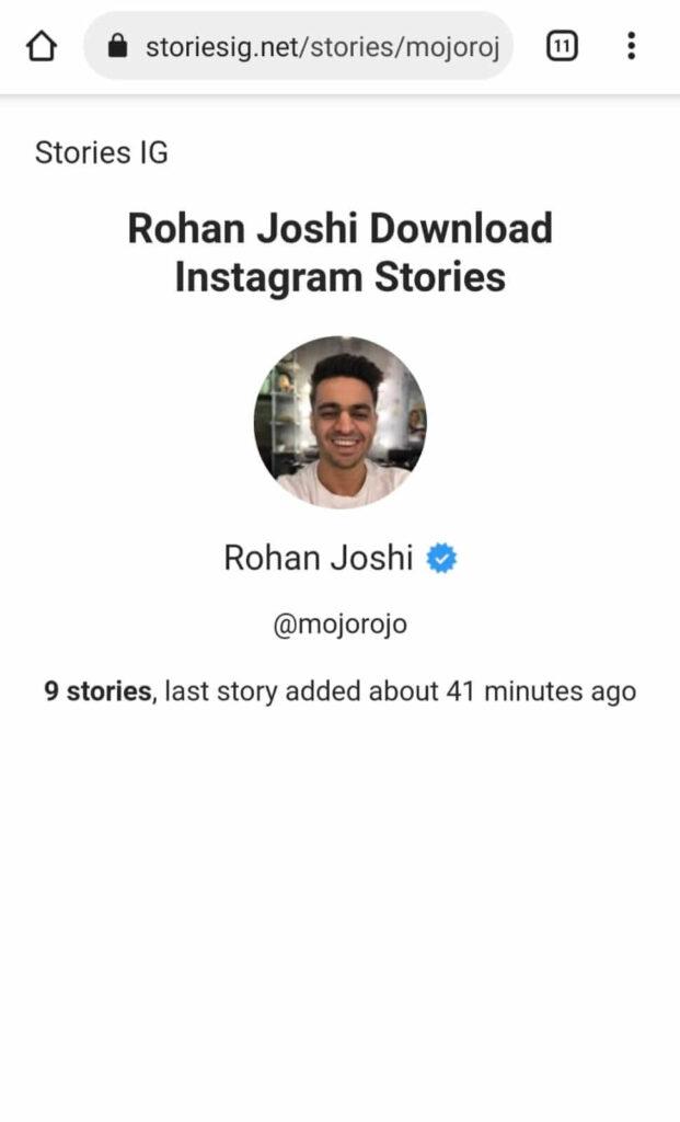 storiesig.net option to watch Instagram story